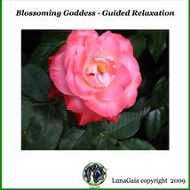 Guided Meditation Audio Download